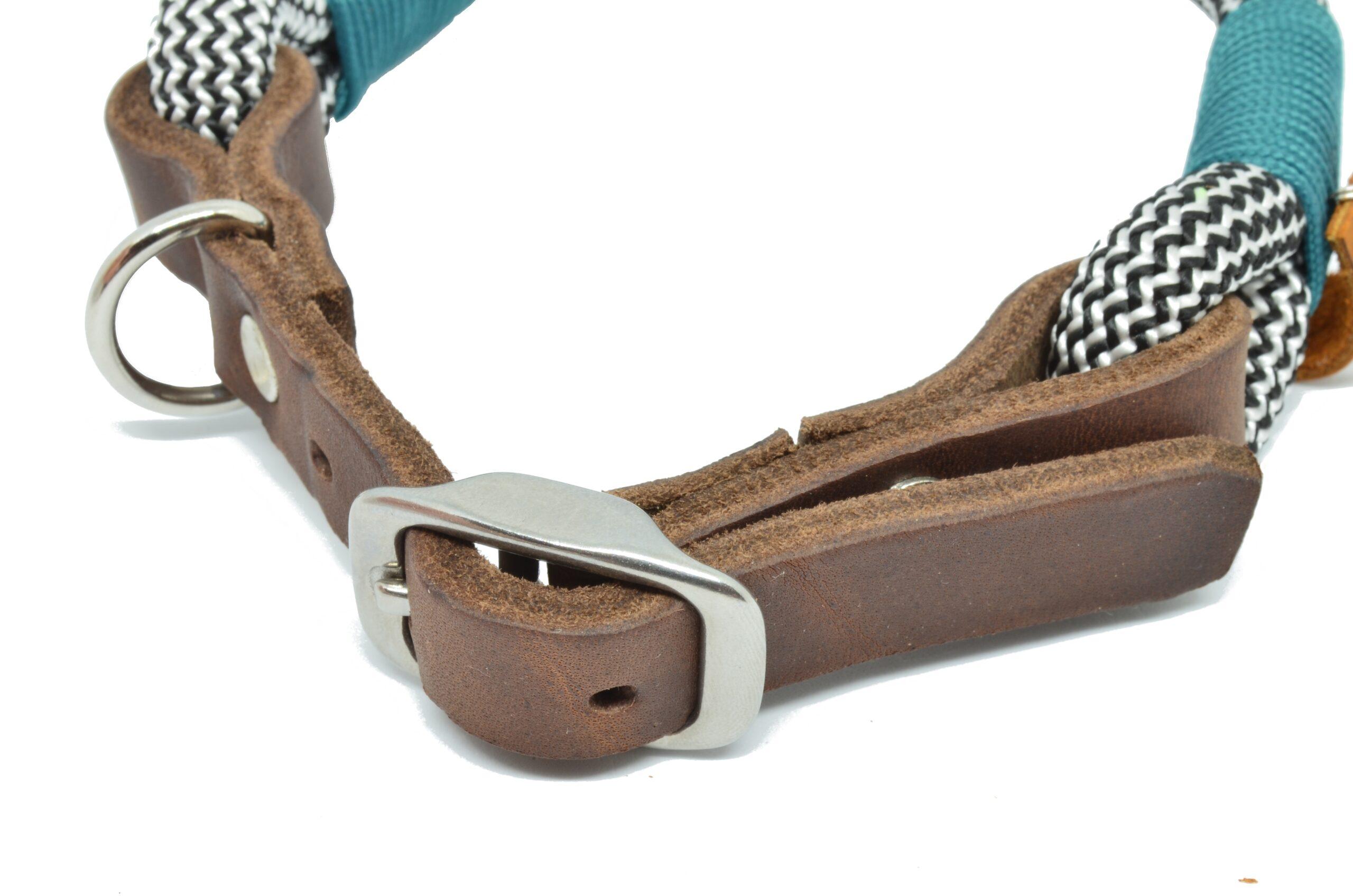 Einfaches Hundehalsband